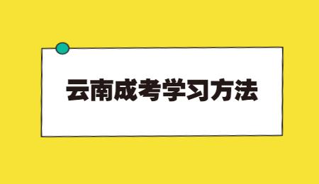云南成考学位英语备考技巧!