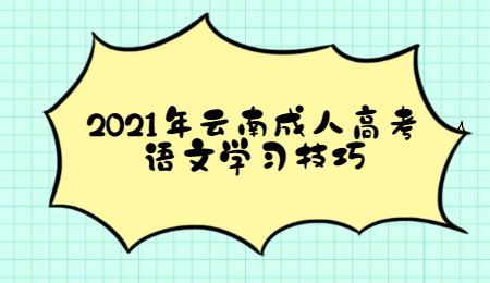 2021年云南成人高考语文学习技巧